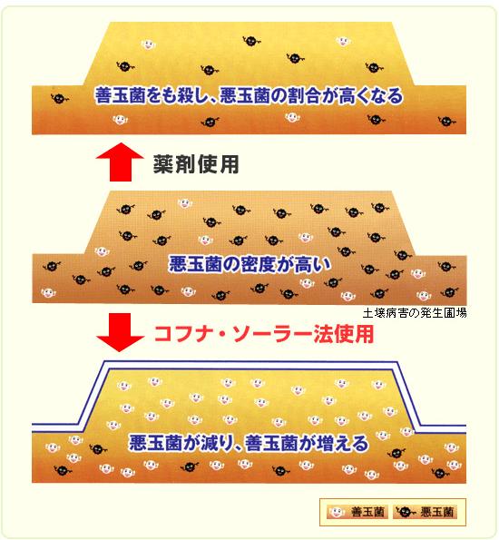 土壌消毒剤