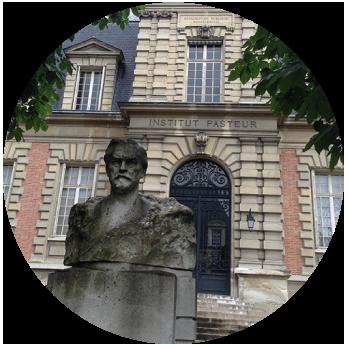 コフナはフランス生まれの微生物資材